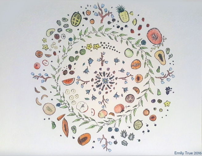 Fruit Mandalas